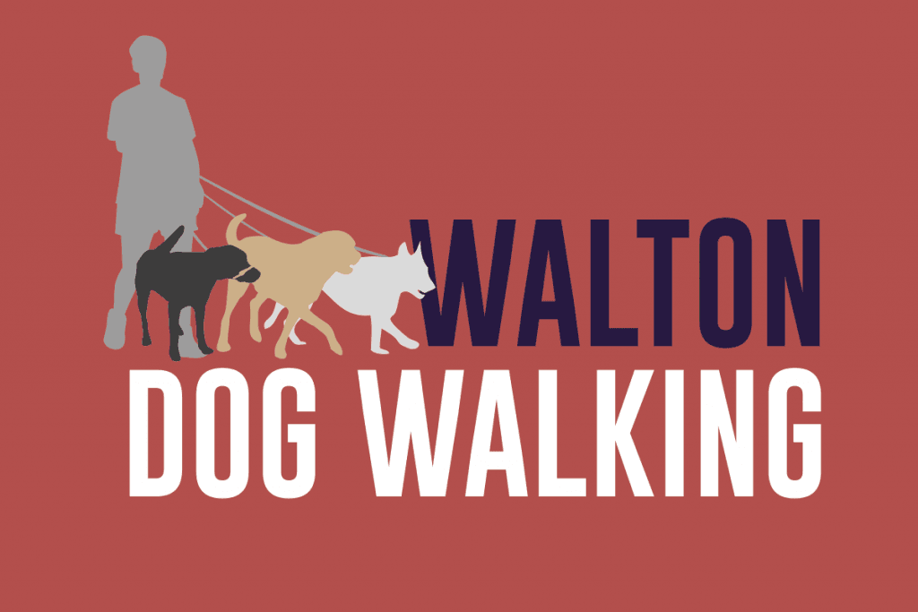 Tidal Studios | Branding & Logo Design | Walton Dog Walking
