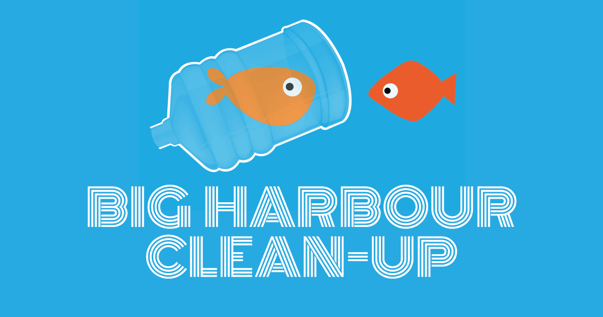 big-harbour-clean-up