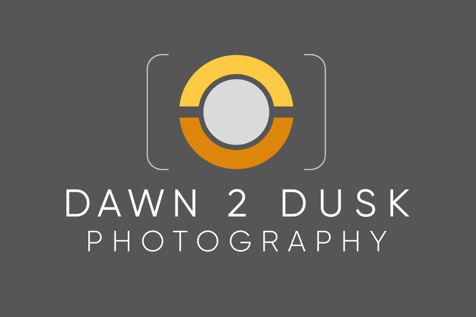 Tidal Studios | Dawn 2 Dusk logo design