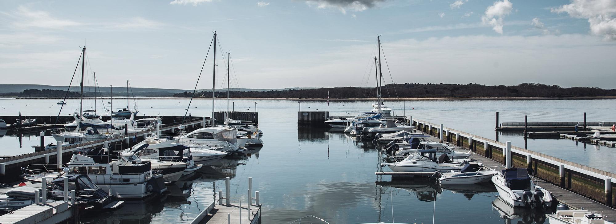 Tidal Studios | Lakeyard website launch
