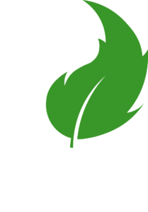 Oceans to Earth